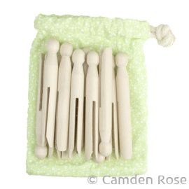 Clothes Pins in a Bag